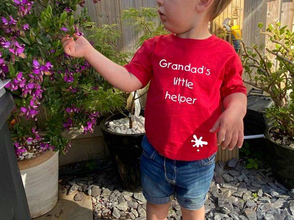 Grandad's Little Helper t-shirt